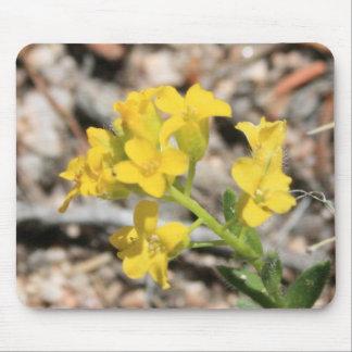 Yellow Wildflowers 2 Mousepad
