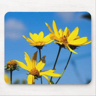 Yellow Wildflowers Against Blue Sky Mouspad Mouse Pad