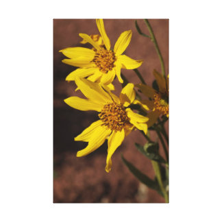 Yellow wildflowers gallery wrap canvas