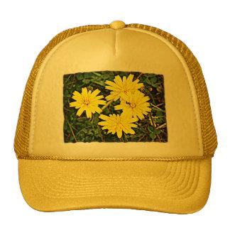 Yellow Wildflowers Hats