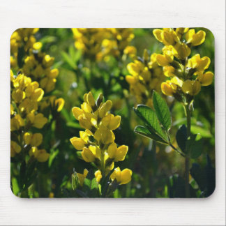 Yellow Wildflowers in the Mountains Mouse Pad