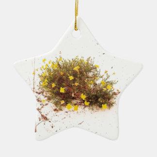 Yellow Wildflowers in White Sand Ceramic Star Decoration