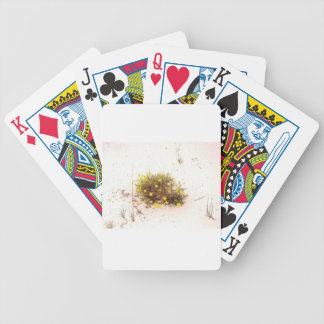 Yellow Wildflowers in White Sand Bicycle Card Deck