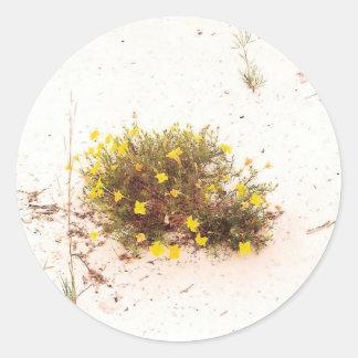 Yellow Wildflowers in White Sand Round Sticker