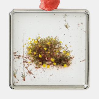 Yellow Wildflowers in White Sand Silver-Colored Square Decoration