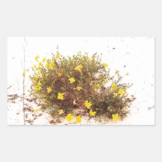 Yellow Wildflowers in White Sand Rectangular Sticker