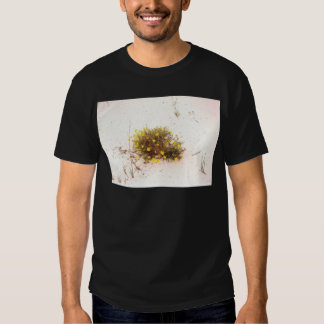 Yellow Wildflowers in White Sand T-shirts