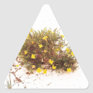 Yellow Wildflowers in White Sand Triangle Sticker