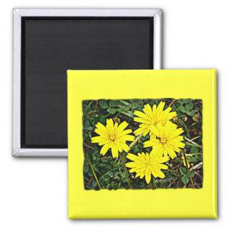 Yellow Wildflowers Fridge Magnets