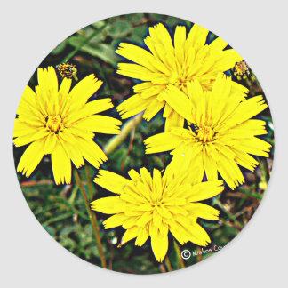 Yellow Wildflowers Round Sticker