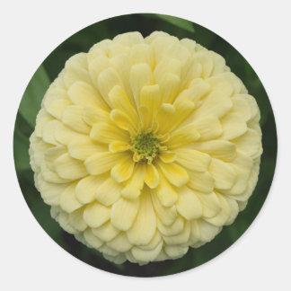 Yellow Zinnia Flower Round Stickers