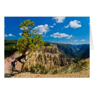 Yellowstone Canyon Edge Card