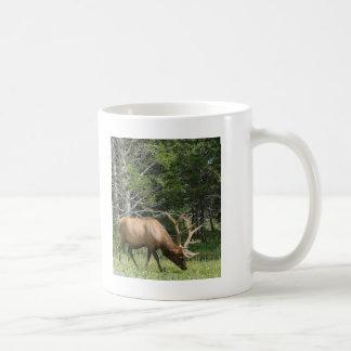 Yellowstone Elk Basic White Mug