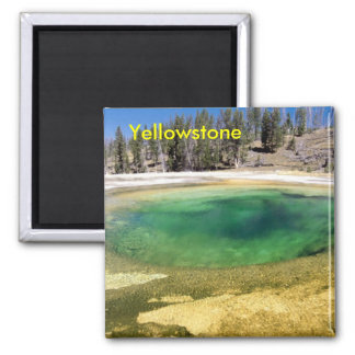 Yellowstone geyser magnet