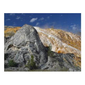 Yellowstone Hot Springs Postcard