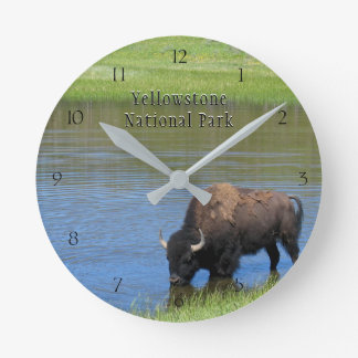 Yellowstone National Park Bison in Pond Wall Clock