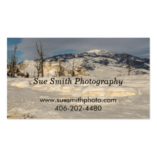 Yellowstone National Park - Rusty Railroad Bridge Pack Of Standard Business Cards