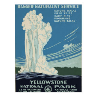 Yellowstone National Park Service Postcard