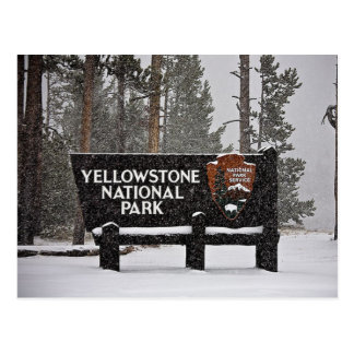 Yellowstone National Park Sign Postcard
