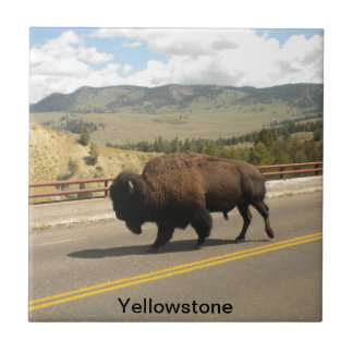 Yellowstone National Park Tile (2)