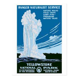 """Yellowstone National Park"" Vintage WPA Postcard"