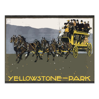 Yellowstone-Park, Vintage Postcard
