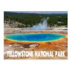 Yellowstone Prismatic Spring Wyoming, USA Postcard