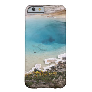 Yellowstone Spring Barely There iPhone 6 Case