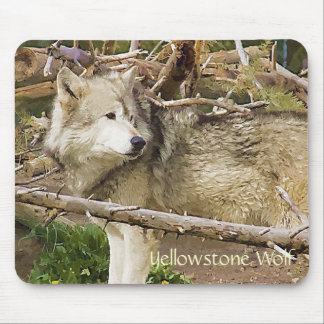 Yellowstone Wolf Mouse Pad