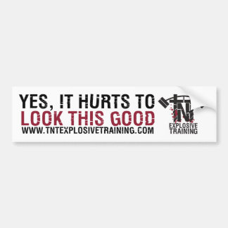 YES,IT HURTS TO LOOK THIS GOOD BUMPER STICKER