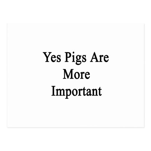 Yes Pigs Are More Important Post Cards