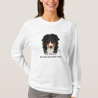 Yes, this is a Bernese Mountain Dog! T-Shirt