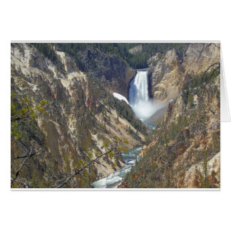 YNP Blank Greeting Card, white envelopes included Card