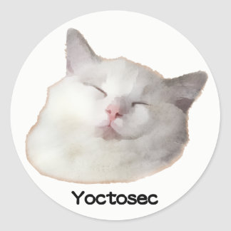 Yoctosec Enlightenment Cat Classic Round Sticker