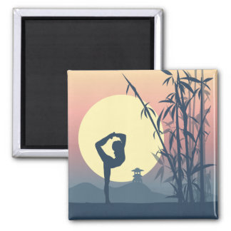 Yoga in the Mist Magnet