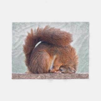 Yoga Squirrel Fleece Blanket