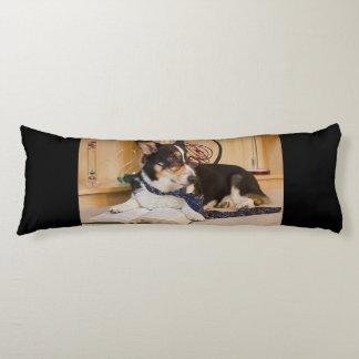Yogi the Science Dog Body Cushion
