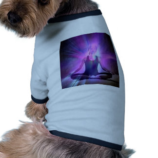 Yogi,yoga,chakra,aura,chakras,energy,colors,chi Dog Shirt