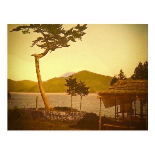 Yokohama Japan Park Vintage Mountains Postcard