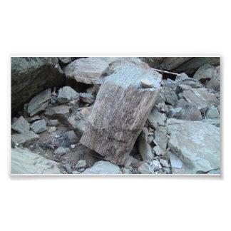 Yolly Bolly Ca Geology Rocks Earth History Stone Photograph
