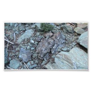Yolly Bolly Ca Geology Rocks Earth History Stone Photographic Print