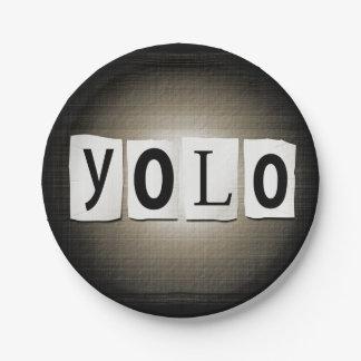 YOLO concept. Paper Plate