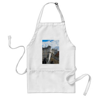 York Minster and Bootham Bar Standard Apron