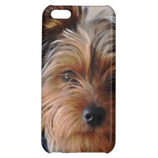 York Terrier iPhone 5C Case