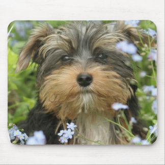 York Terrier Mouse Pad