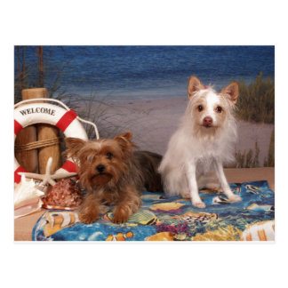 Yorkie and Friends Beach Time Postcard