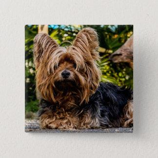Yorkie dog button