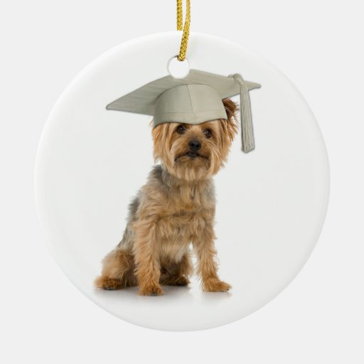 Yorkie Dog with Graduation Hat Ornaments