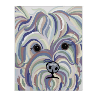 Yorkie in Denim Colors Acrylic Print