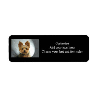 Yorkie  Label Return Address Label